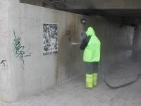 Vabadussilla puhastamine grafitist